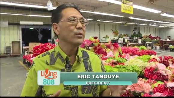 Thank You To The State Of Hawaii S Seal Quality Program And Khon Living 808 For Great Segment On Green Point Nurseries