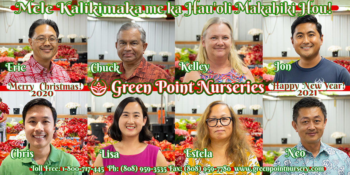 Happy Holidays From Green Point Nurseries!
